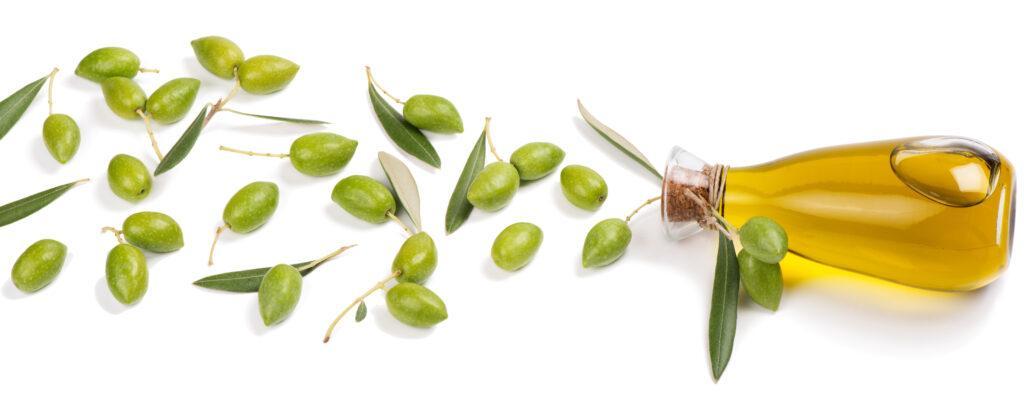 Składniki naszych produktów: Oliwa z oliwek